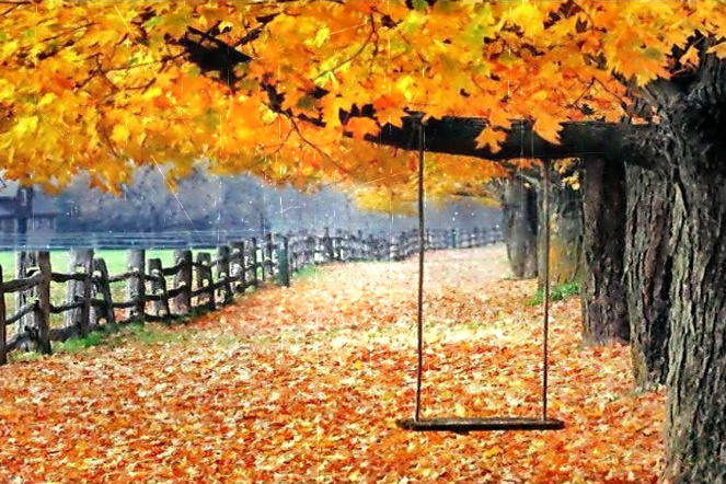 altalena-in-autunno.jpg