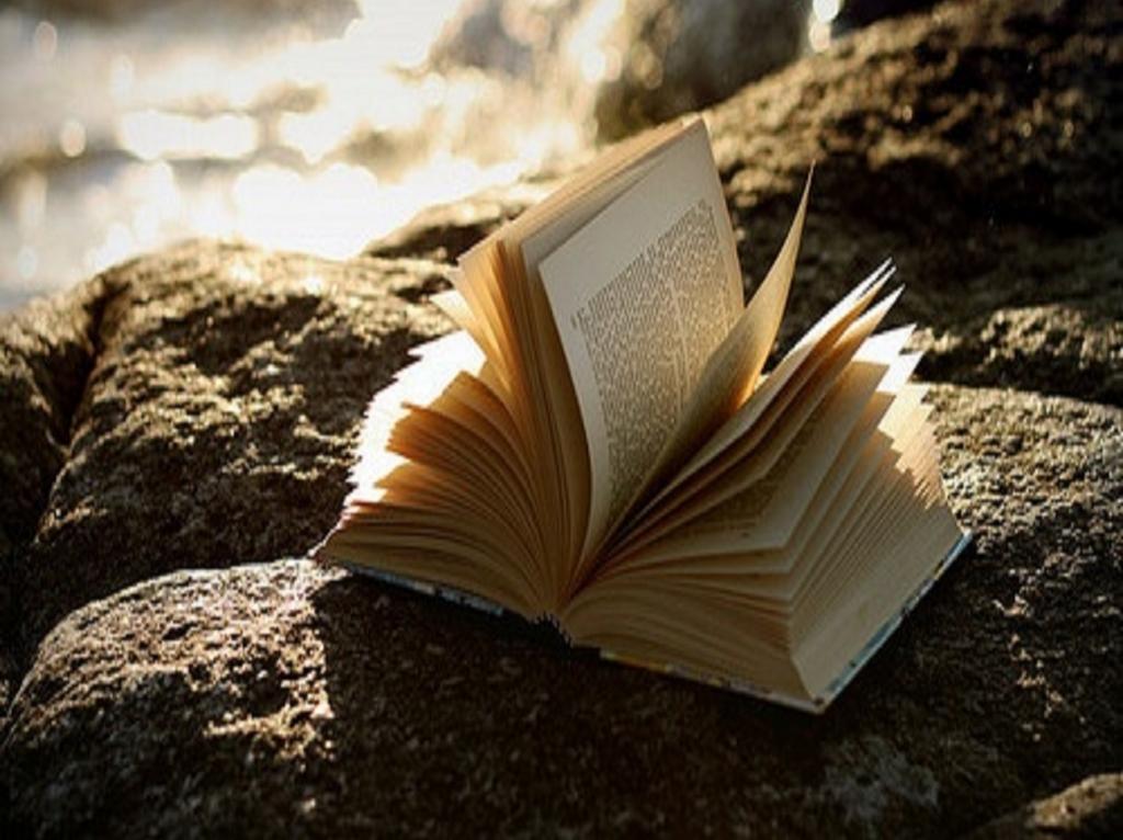 libro-scogli_1024.jpg